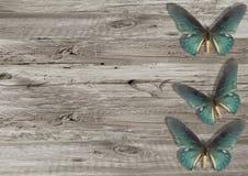 Голубая бабочка на серой деревянной предпосылке Стоковые Фотографии RF