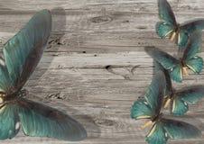 Голубая бабочка на серой деревянной предпосылке Стоковое Изображение RF