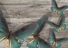 Голубая бабочка на серой деревянной предпосылке Стоковые Изображения