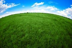 голубая белизна неба зеленого цвета поля облаков Стоковые Фото