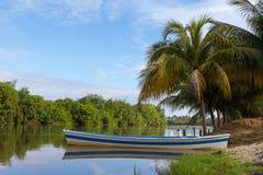 голубая белизна шлюпки Coqueiro и Рио Стоковая Фотография RF