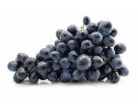 голубая виноградина группы изолировала Стоковое Изображение