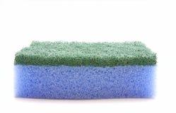 голубая губка Стоковая Фотография