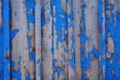 голубая древесина текстуры старая древесина текстуры Стоковое Изображение