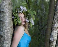 голубая женщина платья Стоковое Фото
