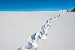 голубая зима неба ландшафта чудесная Стоковая Фотография