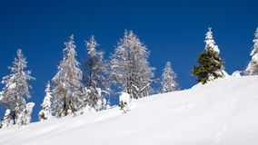 голубая зима неба ландшафта Стоковая Фотография RF