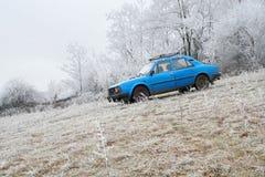 голубая зима пущи автомобиля Стоковые Фото