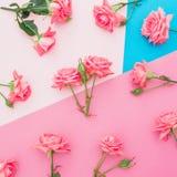 Голубая и розовая пастельная предпосылка с розами цветет Плоское положение Взгляд сверху Стоковое Изображение RF