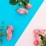 Голубая и розовая пастельная предпосылка с розами цветет скопируйте космос Плоское положение Взгляд сверху Стоковые Изображения RF