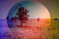Голубая и солнечная земля Стоковые Фотографии RF