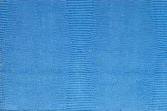 голубая кожаная текстура Стоковая Фотография RF
