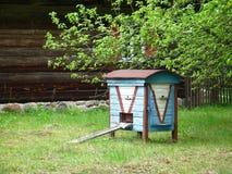 голубая крапивница Стоковые Фотографии RF