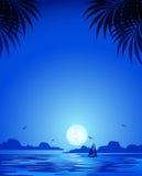 голубая ноча иллюстрация штока