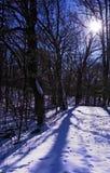 голубая освещенная зима тропки Стоковое фото RF