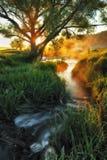 голубая пасмурная весна неба утра зеленого цвета травы поля E Стоковые Изображения RF