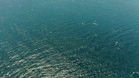 Голубая поверхность моря, взгляд сверху сток-видео