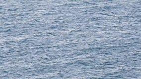 Голубая поверхность моря с волнами сток-видео