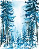 голубая пуща Стоковые Изображения RF