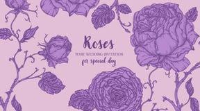 Голубая рамка Rose иллюстрация штока