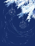 голубая рождественская елка ветви Стоковое Изображение RF