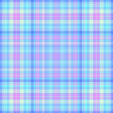 голубая розовая шотландка Стоковая Фотография RF