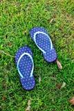 голубая сандалия польки травы многоточия Стоковые Фотографии RF