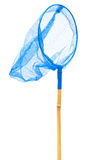 голубая сеть бабочки Стоковое фото RF