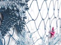 Голубая сеть и искусственные морские звёзды сделанные из пластмассы на стене декабре Стоковое Изображение RF