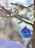 Голубая сияющая зима спруса шарика стоковые изображения rf