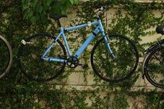 Голубая смертная казнь через повешение велосипеда на стене Стоковые Изображения