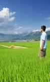 голубая стойка неба зеленого человека фермы Стоковое Изображение