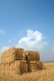 голубая сторновка неба хлебоуборки стоковые фотографии rf