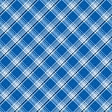 голубая яркая шотландка Стоковая Фотография