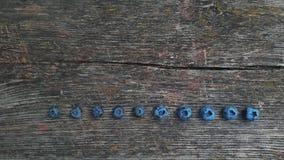 голубика свежая свеже выбранные голубики стоковое фото rf