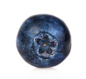 голубика стоковая фотография