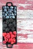 Голубики ежевик поленик ягод стоковое фото rf
