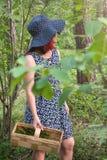 Голубики ягоды леса, собирая подарки леса стоковые изображения