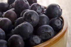 голубики bowl свеже выбрано Стоковые Фотографии RF