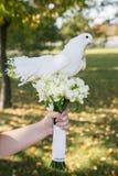 Голуби на букете свадьбы Стоковые Фотографии RF