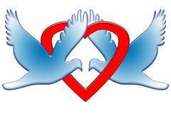 голуби романтичные Стоковое фото RF