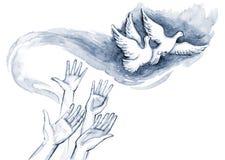 голуби Стоковые Изображения