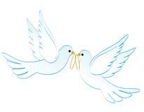 голуби wedding Стоковое Изображение