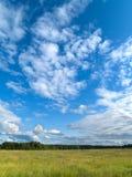 голубое глубокое небо зеленого цвета поля Стоковые Изображения