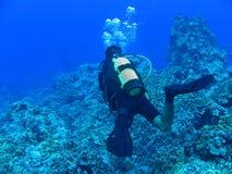 голубое глубокое подныривание Стоковое Изображение RF