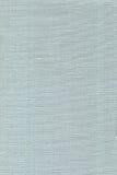 голубое драпирование яичка утки Стоковое Изображение RF