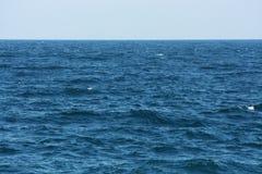 голубое море Стоковые Фотографии RF