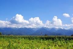 голубое небо гор холмов поля облаков Стоковая Фотография RF