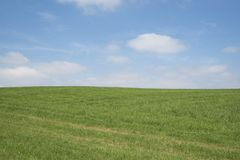 Голубое небо, зеленая трава, белые облака стоковое фото rf