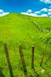 голубое небо зеленого холма Стоковое Фото